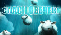 Игра Спаси овечек!