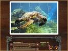 Скриншот игры - Карибский пазл