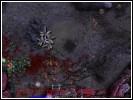 Скриншот игры - Звездный Легион