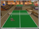 Скриншот игры - Пинг-Понг